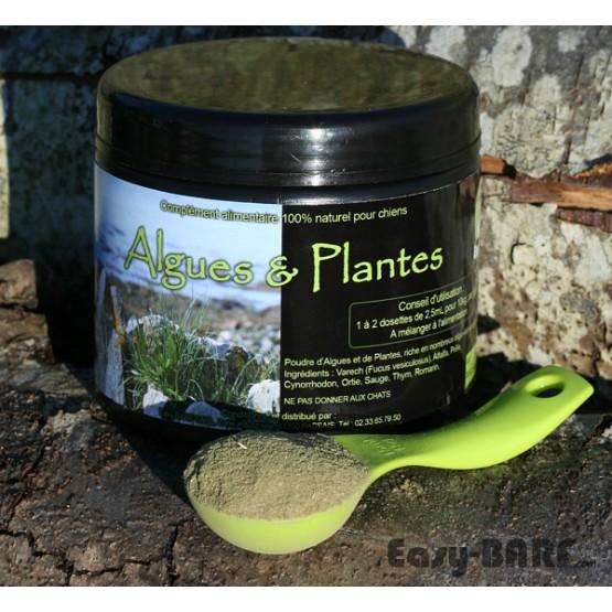 Mélange algues et plantes chiens