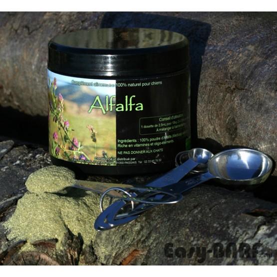 Alfalfa en poudre