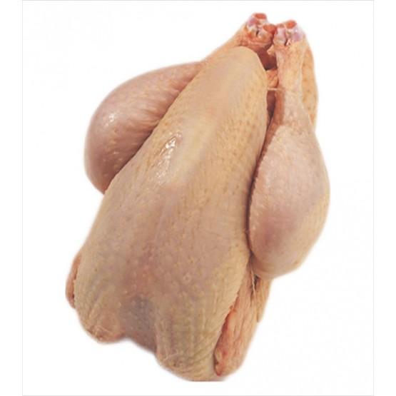 Poules entières 11kg